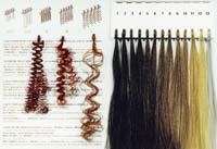 Exoderm Hair implant colors